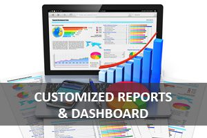 Customized Reports & Dashboard